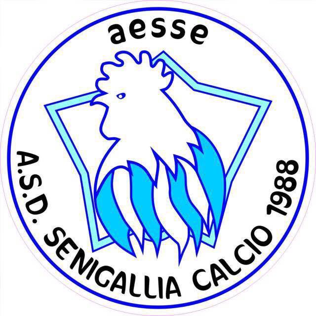 AESSE - ASD Senigallia calcio 1988